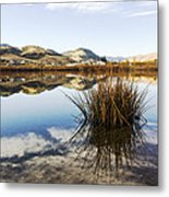 Montana Reflections Metal Print by Dana Moyer