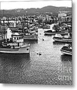Monterey Harbor Full Of Purse-seiner Fishing Boats California 1945 Metal Print