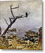 Monterey Mist Metal Print