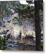 Monterey Rock Pines And Cypress Metal Print
