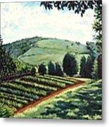 Monticello Vegetable Garden Metal Print