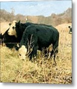 Moo Cow Munch Metal Print