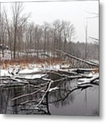 Winter's Moods Metal Print