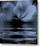 Moon Glow Double Vision Metal Print