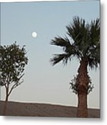 Moon Over Baja Desert Metal Print