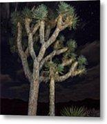 Moon Over Joshua - Joshua Tree National Park In California Metal Print
