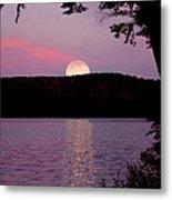 Moon Over Parks Pond Metal Print