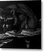 Moonlight Bandit Metal Print