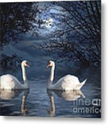 Moonlight Swim Metal Print