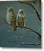 Moonlight Watchers Metal Print by Paul Krapf