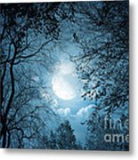 Moonlight With Forest Metal Print