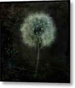 Moonlit Dandelion Metal Print