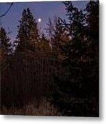 Moonlit Evening Metal Print