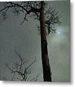 Moonlit Marks On A Ground Glass Canvas  Metal Print
