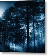 Moonlit Night Metal Print