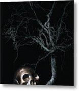 Moonlit Skull And Tree Still Life Metal Print by Tom Mc Nemar