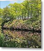 Moore State Park Water Reflections Metal Print