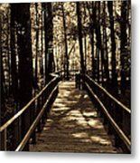 Moores Creek Battlefield  Nc Swam Bridge  Metal Print