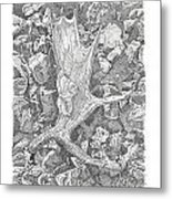 Moose Antler Shed Metal Print by Kenneth or Susan Posselt