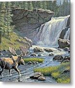 Moose Falls Metal Print by Paul Krapf