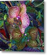 More Orchids Metal Print by Doris Wood