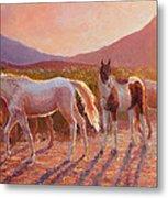 More Than Light Arizona Sunset And Wild Horses Metal Print