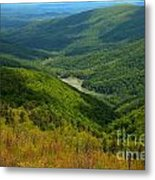 Moormans River Overlook In Spring Metal Print
