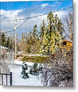 Morning After The Ice Storm Metal Print