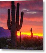 Morning Arizona Style  Metal Print