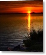 Morning By The Shore Metal Print