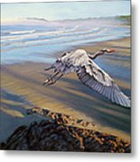 Morning Fight-blue Heron Metal Print