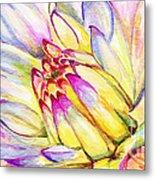 Morning Flower Metal Print