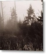 Morning Fog In The Smoky Mountains Metal Print by Dan Sproul