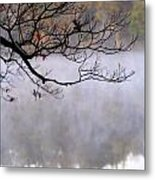 Morning Fog Over Lake Metal Print