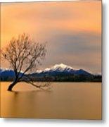 Morning Glow Of The Lake Wanaka Metal Print