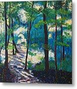 Morning Sunshine In Park Forest Metal Print