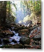 Morning Light 3 Metal Print