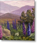 Morning Lupines Metal Print