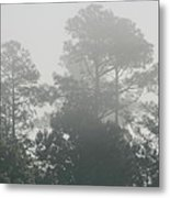 Morning Mist 3 Metal Print