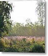 Morning Mist In The Pasture Metal Print
