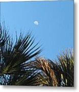 Morning Moon Over Palms Metal Print
