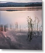 Morning Nocturne. Ladoga Lake. Northern Russia  Metal Print