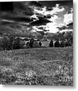Morning On The Farm Two Bw Metal Print