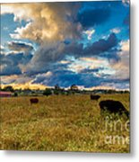 Morning On The Farm Two Metal Print