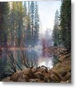 Morning On The Merced Metal Print