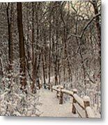 Morning Snow Path Metal Print