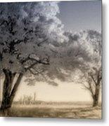 Morning Softness II - Blue Ridge Parkway Metal Print
