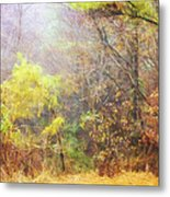 Landscape - Trees - Morning Walk In The Woods Metal Print