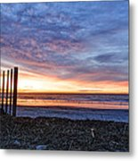 Morning With The Birds Metal Print