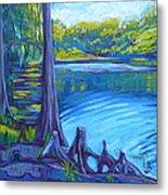 Moss And Cypress Metal Print